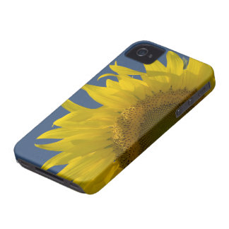 Sunflower Rising iPhone 4 Case-Mate Barely There