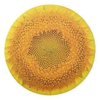Sunflower Round Eraser