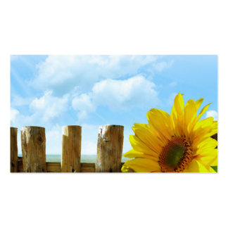 Sunflower Scene Pack Of Standard Business Cards