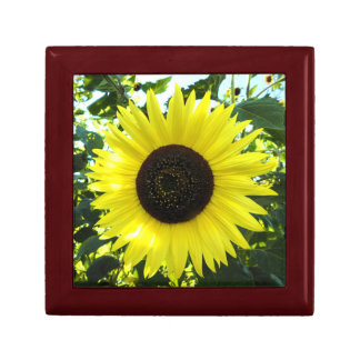 Sunflower Sensation Wood Gift Box