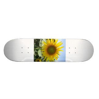 Sunflower Skate Board