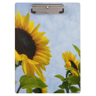 Sunflower Sky Clipboard