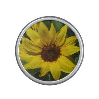 Sunflower Speaker