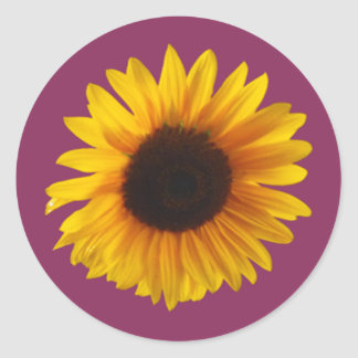 Sunflower Stickers (Round) (Gold and Raspberry)
