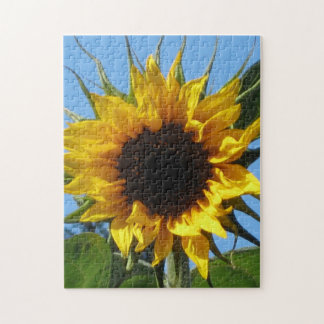 Sunflower Sturdy Chipboard Mounted Puzzles