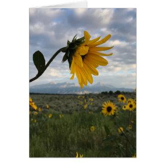 Sunflower Teacher Card