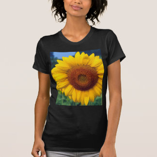 Sunflower Tee Shirts