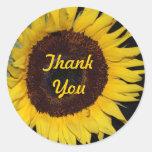 Sunflower, Thank You Classic Round Sticker
