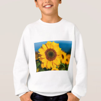 Sunflower The Morning Flower Garden Sunny The Sun Sweatshirt