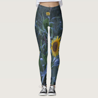 Sunflower Tights designed by Ria Bella Buys