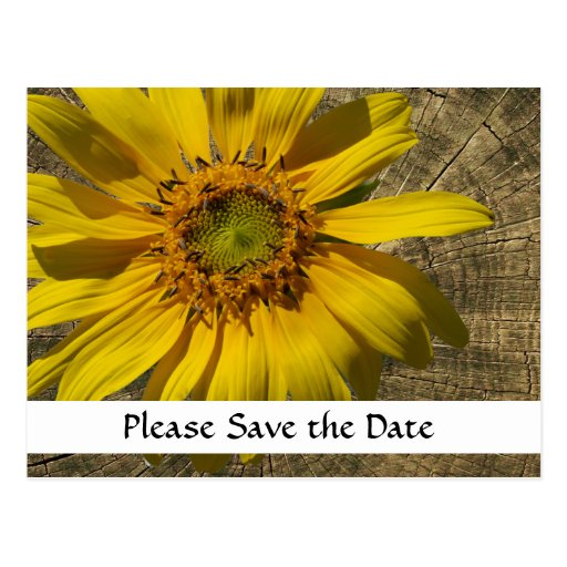 Sunflower Tree Stump Country Save the Date Postcards