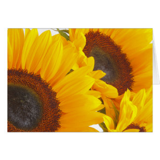 Sunflower Triplettes Card