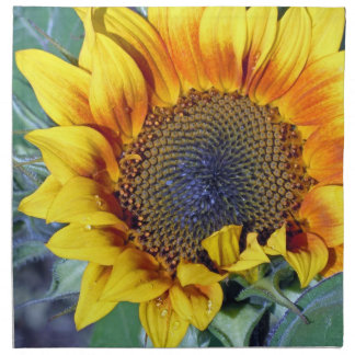 Sunflower with water droplets napkin