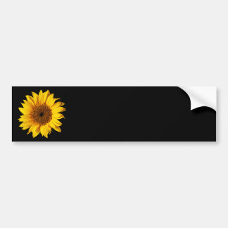 Sunflower Yellow on Black - Customized Sun Flowers Bumper Sticker