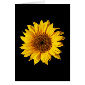 Sunflower Yellow on Black - Customized Sun Flowers Card