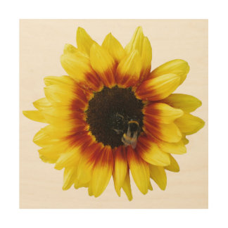 Sunflower yellow,Orange,Black with Bee Wood Canvas