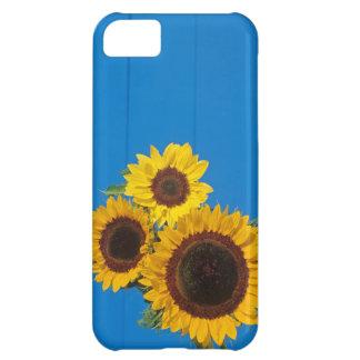 Sunflowers against blue fence iPhone 5C case