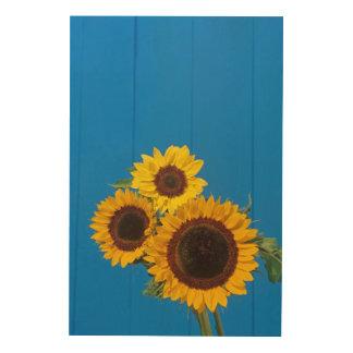 Sunflowers against blue fence wood print