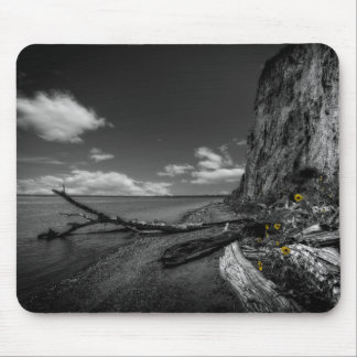 Sunflowers along the Missouri River Mouse Mat