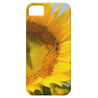 Sunflowers and bees iPhone6 case Case For The iPhone 5