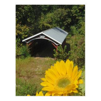 Sunflowers and Cover bridge Postcard