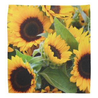 Sunflowers Bandana