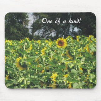 Sunflowers Galore Mouse Mat