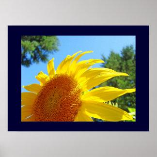 Sunflowers Garden art prints Blue Sky Summer Day Print