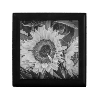 Sunflowers Gift Box