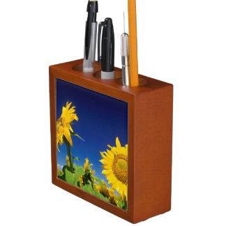 Sunflowers (Helianthus Annuus), Near Senekal Desk Organiser