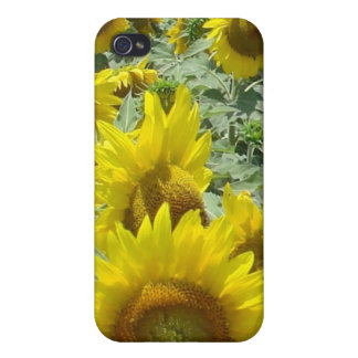 Sunflowers i phone Skin Cases For iPhone 4