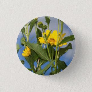 Sunflowers in Iowa Photo 3 Cm Round Badge