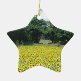 Sunflowers in Limousin Ceramic Star Decoration