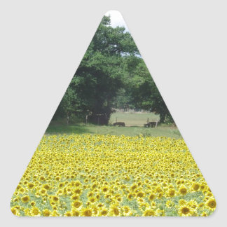 Sunflowers in Limousin Triangle Sticker