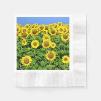 Sunflowers In The Field Disposable Serviettes