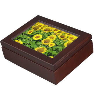 Sunflowers In The Field Memory Boxes