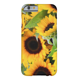 Sunflowers iPhone 6 case