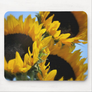 Sunflowers Mouse Mat