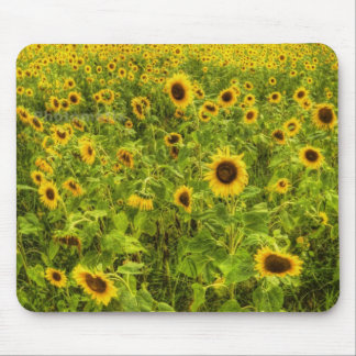 Sunflower's Mouse Pad