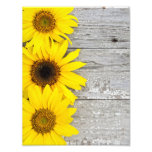 Sunflowers on a Table Photo