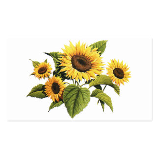 Sunflowers Pack Of Standard Business Cards