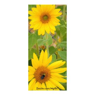 Sunflowers Rack Card