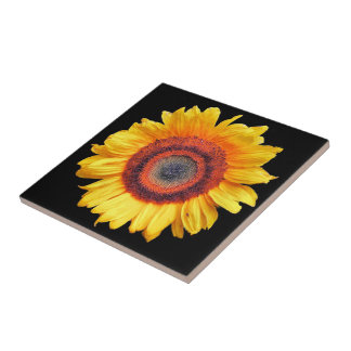 SUNFLOWERS TILE