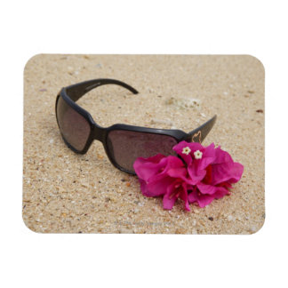 Sunglasses and bougainvillia flowers on coral magnet