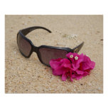 Sunglasses and bougainvillia flowers on coral poster