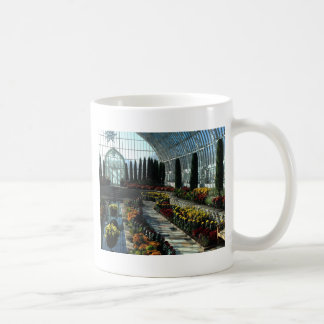 Sunken Garden Room, Como Conservatory, Minnesota Coffee Mug