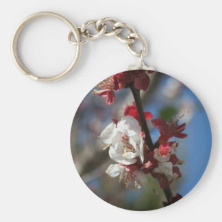 Sunlight Embracing Apricot Blossom Keychains
