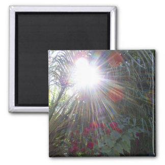 Sunlight Garden Square Magnet
