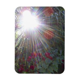 Sunlight Garden Vinyl Magnet