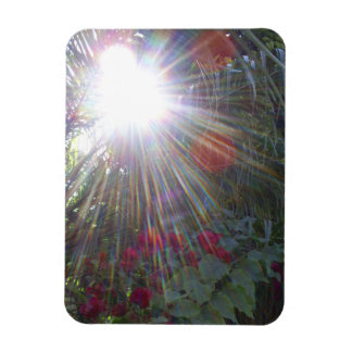 Sunlight Garden Rectangular Photo Magnet